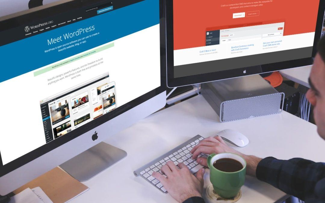 Content Management Systems: Which CMS should you choose?